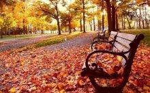 massolpanjava musim gugur