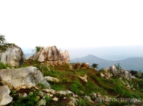 massolpanjava-stone garden 007